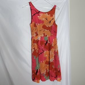 Anthropologie Dresses - Antho  We love Vera Changing Canopy Dress